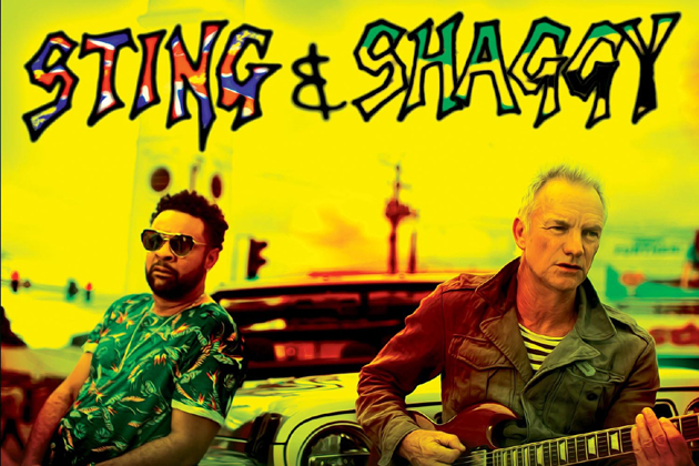 Cannes Destination Sting_Shaggy_COL1